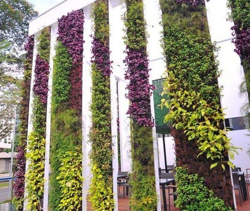 19 Best Vertical Garden Wall Ideas For Apartment Balconies & Interior Design